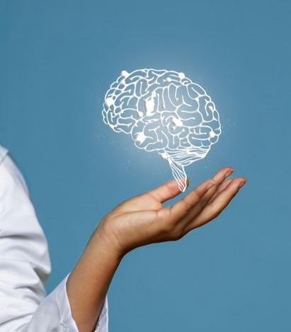 Neuroventas. El Cerebro Comprador